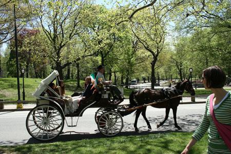 Paseando por Central Park