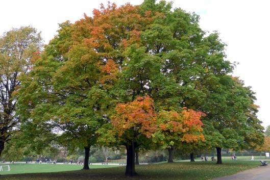 Londres_2009-10-18_11-54-09