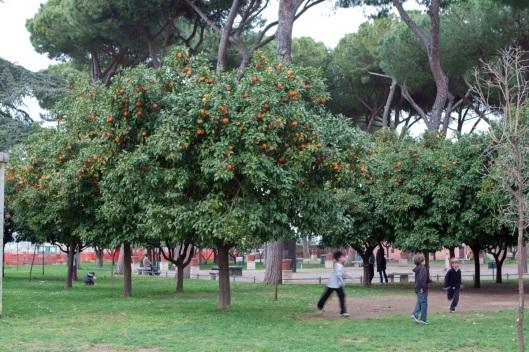 Jardín de los Naranjos