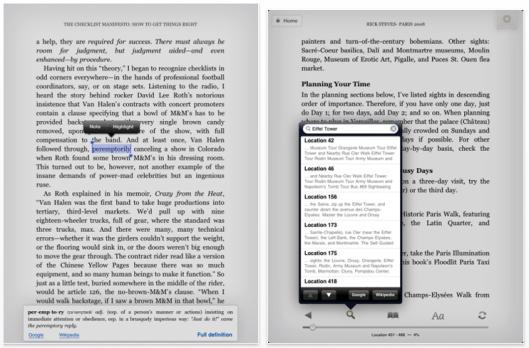 Libro electrónico en el Kindle para iPad